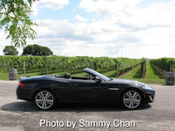 2013 Jaguar XKR Convertible Black side view wine orchard background field