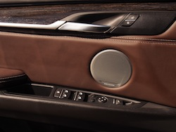 2014 BMW X5 xDrive 35i Sparking Brown Metallic nappa leather extended door panel