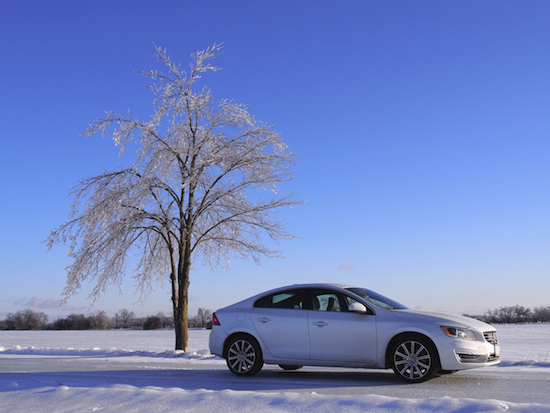 2014 Volvo S60 T6 AWD side view snow tree