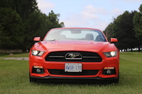 ford mustang 50th anniversary edition gt