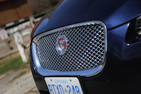 jaguar xf grill growler red