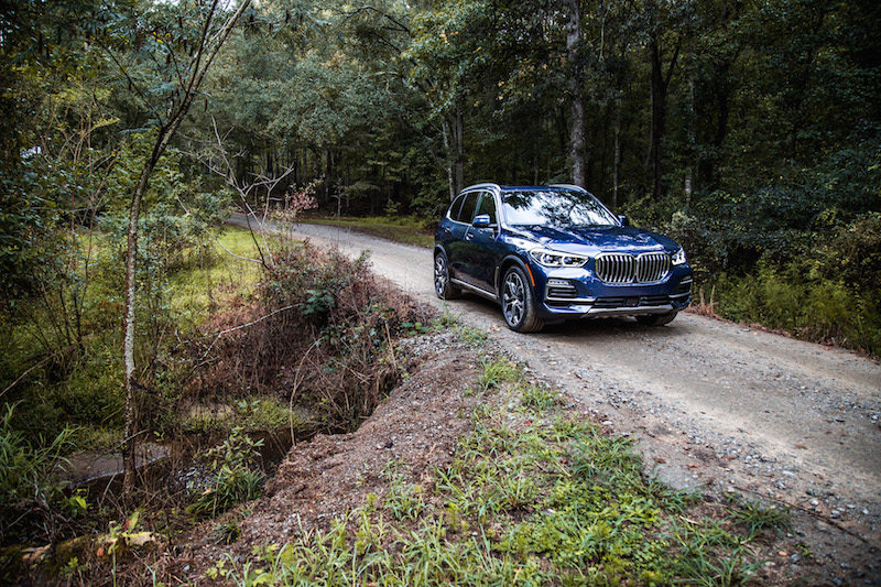 2019 BMW X5 jungle forest